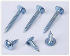 Modified Truss Head Screw